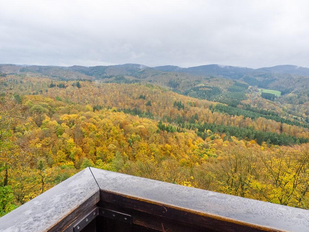 Aussicht Thüringer Wald Wartburg