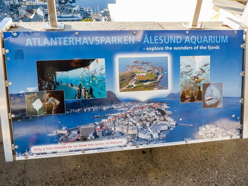 Atlanterhavsparken Ålesund Norwegen Aquarium Fisch