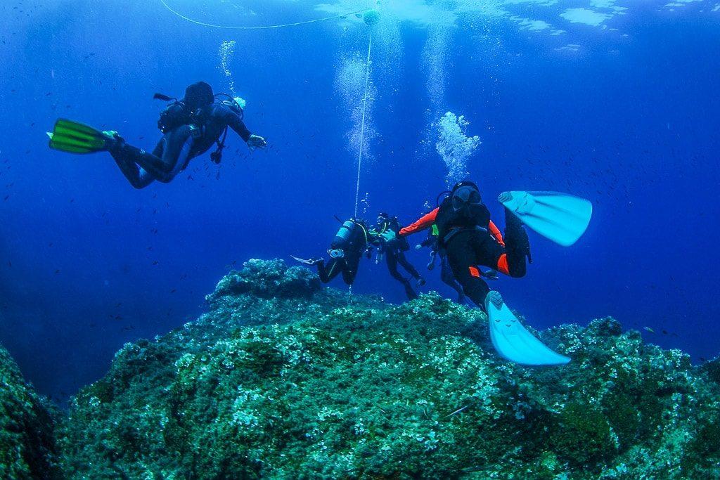 Tauchen vir Ischia Golf von Neapel Italien